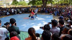 Suasana pertarungan gulat Khmer selama festival Pchum Ben atau festival kematian di desa Vihear Suor, provinsi Kandal (9/10). Festival ini menandai berakhirnya festival 15 hari bagi orang mati. (AFP Photo/Tang Chhin Sothy)
