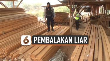 Polresta Pontianak menggerebek pabrik pengolahan kayu tanpa izin di Kecamatan Sungai Ambawang, Kubu Raya, Kalimantan Barat, Selasa (1/10/2019).