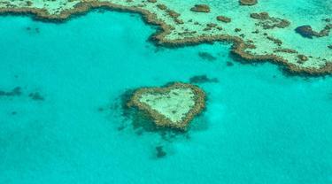 Ilustrasi Great Barrier Reef, Australia