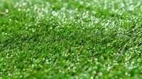 Ilustrasi rumput sintetis (sumber: Pixabay)