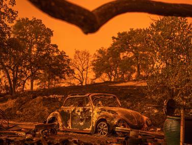 Kebakaran Hutan Mengerikan di California