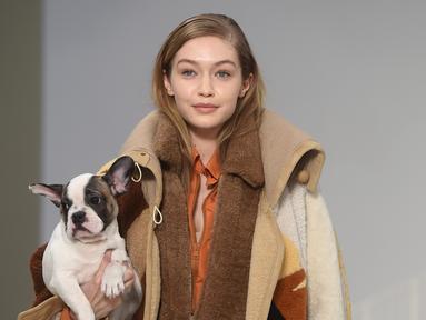 Model asal AS, Gigi Hadid menggendong anak anjing saat memamerkan rancangan Tod's di Milan Fashion Week, Milan, Italia, Jumat (23/2). (Filippo MONTEFORTE/AFP)