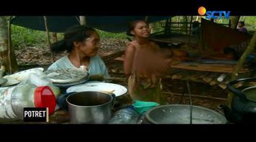 Senandung harap bergema di hutan hujan pedalaman Sumatera.
