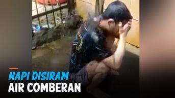 VIDEO: Heboh Napi Disiram Air Comberan, ini Kata Kalapas Pontianak
