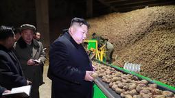 Pemimpin Korea Utara Kim Jong-Un melihat kentang saat mengunjungi pabrik produksi Samjiyon Potato Farina di Samjiyon County (30/10). (Photo by KCNA VIA KNS / KCNA VIA KNS / AFP)