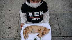 Seorang aktivis dari kelompok 'Animal Liberation Wave' dan 'Last Chance for Animals' membawa anak anjing mati yang diambil dari peternakan daging anjing di Gwanghwamun Plaza, Seoul (7/7). Mereka memprotes perdagangan daging anjing. (AFP Photo/Ed Jones)