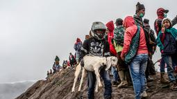 Suku Tengger membawa kambing sajen menuju puncak untuk melarungnya ke kawah dalam ritual Yadnya Kasada di Gunung Bromo, Probolinggo, Jawa Timur, Kamis (18/7/2019). Yadnya Kasada diselenggarakan pada hari ke-14 bulan Kasada. (JUNI KRISWANTO/AFP)