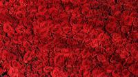 Ilustrasi warna merah (Gambar oleh Dr Carl Russell dari Pixabay)