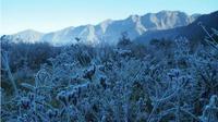 Fenomena embun es di Gunung Bromo. (Liputan6.com/Dian Kurniawan)