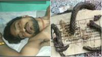 Pria digigit ular (Sumber: aninews)