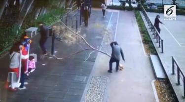 Seorang pria tiba-tiba terjatuh saat melintas di Kota Xiamen, China. Korban jatuh setelah tertimpa dahan besar yang patah dari pohon di sisi jalan.
