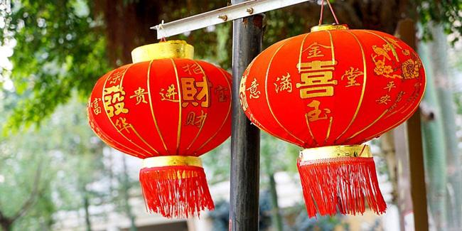 Shio yang paling beruntung tahun ini/copyright Pixabay.com