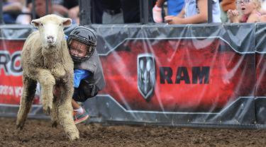 Seorang anak mengenakan helm dan rompi pelindung menungangi domba selama kompetisi Wool Riders Only Mutton Bustin 'di Iowa State Fair di Des Moines, Iowa, AS (12/9/2019). Kompetisi ini pertama kali diadakan pada tahun 1854. (Chip Somodevilla/Getty Images/AFP)