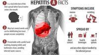 Hepatitis A (nurse stuff)