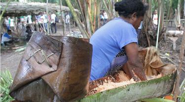 Sagu Papua Diminati di Kepulauan Meranti Riau