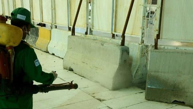 Petugas kebersihan mengatasi invasi serangga jangkrik di Masjidil Haram (Twitter)