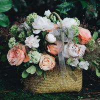 Ilustrasi berbagai macam bunga. (Unsplash.com/lizzie).
