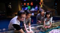Jakarta Aquarium. (Ist)