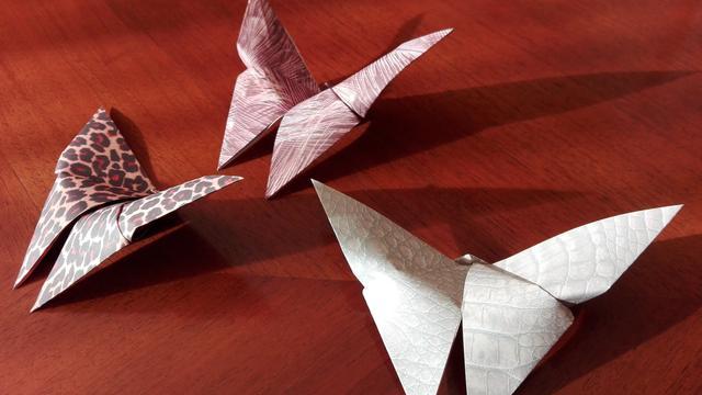 Cara Membuat Kupu Kupu Dari Kertas Origami Mudah Dan