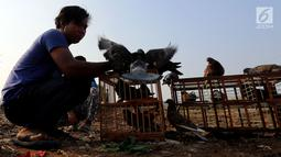 Warga bersiap melepas burung merpati di bantaran Kanal Banjir Barat (KBB), Petamburan, Jakarta, Kamis (21/9). Bermain burung merpati merupakan hobi yang digemari warga di bantaran Kanal Banjir Barat untuk mengisi waktu libur. (Liputan6.com/Johan Tallo)