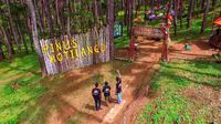 Hutan Pinus Motilango di Gorontalo bisa menjadi destinasi wisata alternatif bagi mereka yang ingin mendapatkan suasana pagi setiap saat. (Liputan6.com/ Arfandi Ibrahim)