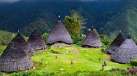 Pemandangan Desa Wae Rebo (Foto: Liputan6.com / HANA ADI / JAWAPOS.COM)