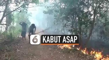 Sejumlah hewan keluar dari habitatnya akibat kebakaran hutan dan lahan di kawasan Seberang Ulu Satu, Palembang, Senin (14/10/2019).