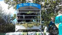 Festival Puck Fair yang memberikan mahkota raja kepada kambing di Irlandia. (http://puckfair.ie/)