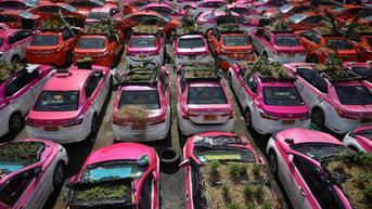 Viral, Perusahaan Taksi Ini Sulap Mobil Menganggur Jadi Kebun Sayur