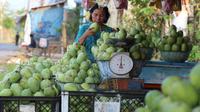 Pedagang menata buah mangga dagangannya yang dijajakan di Jalur Pantura Indramayu, Jawa Barat, Kamis (29/6). Berbagai jenis mangga seperti gedong, arum manis dan golek menjadikan buah ini oleh-oleh khas daerah Indramayu. (Liputan6.com/Helmi Afandi)
