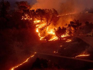 Kebakaran Hutan di California: Api membakar lereng bukit di kawasan Sonoma, California, Amerika Serikat pada 26 Oktober 2019. Kebakaran hutan kian tak terkendali akibat angin kencang yang bertiup. (AP Photo/Nuh Berger)