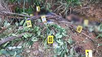 Tempat Kejadian Perkara (TKP) pembunuhan sadis dua remaja di Kabupaten Muba Sumsel (Liputan6.com / Nefri Inge)