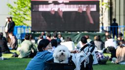 "Seekor anjing melihat keluar sebagai layar yang menampilkan duo piano Les Frères memainkan konser ""The Pianist Special"", dimainkan di dalam ruangan dan secara bersamaan disiarkan ke area terbuka pusat perbelanjaan di Tachikawa, Tokyo (11/4/2021). (AFP Photo/ Philip Fong)"