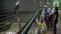 Pengunjung melihat burung di dalam kawasan Taman Mini Indonesia Indah, Jakarta, Minggu (12/10/2021). Uji coba pengoperasian tempat wisat ini harus  dengan Kapasitas pengunjung pada masa uji coba dibatasi hanya 25 persen. (Liputan6.com/Faizal Fanani)