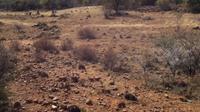 Daerah luas tempat kota yang hilang, yang dikenal sebagai Kweneng. (Kredit: Karim Sadr, profesor arkeologi di University of the Witwatersrand, di Afrika Selatan)