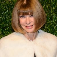 Anna Wintour -- Photo: Shutterstock