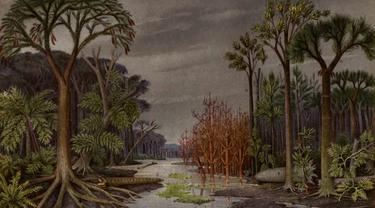 Pohon masa Permian