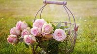 Ilustrasi mawar (dok. Pixabay.com/Putu Elmira)