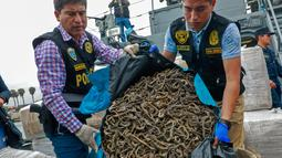Petugas menunjukkan kuda laut yang disita dari sebuah kapal di Pelabuhan Callao, Peru, Senin (30/9/2019). Kuda laut bernilai lebih dari US 6 juta tersebut akan dijual di Asia. (Peruvian Ministry of Production/AFP)