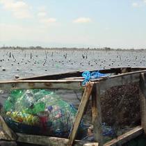 PBB jalankan program PBB Smart Fish di Takalar, Sulawesi Selatan. Program ini bertujuan kembangkan potensi Takalar sebagai penghasil rumput laut kualitas unggulan.