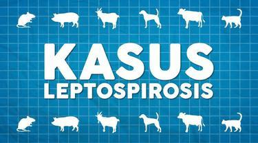 Direktur Jenderal Pencegahan dan Pengendalian Penyakit Kementerian Kesehatan RI, Anung Sugihantono menyebutkan ada delapan provinsi yang terdapat kasus leptospirosis.