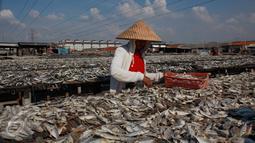 """Pekerja menjemur ikan asin di Muara Angke, Penjaringan, Jakarta Utara, Senin (1/8). Musim kemarau dengan curah hujan yang cukup tinggi atau fenomena """"La Nina"""" berimbas pada proses pengeringan ikan. (Liputan6.com/Gempur M Surya)"""