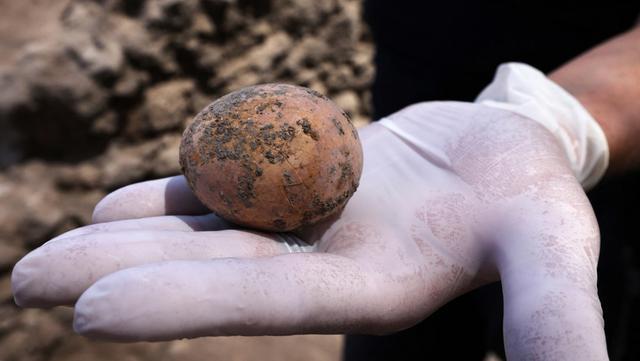 Arkeolog menunjukkan telur ayam berusia 1.000 tahun yang ditemukan selama penggalian di Kota Yavne, Israel, Rabu (9/6/2021). Menurut Otoritas Barang Antik Israel, peternakan unggas dimulai sekitar 2.300 tahun yang lalu di Israel. (Emmanuel DUNAND/AFP)