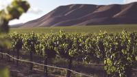Ilustrasi Santa Maria Valley (dok.unsplash)