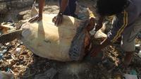Warga yang berada di pesisir Kota Kendari, saat mengolah penyu menjadi hidangan saat pesta rakyat.(Liputan6.com/Eko Untuk Ahmad Akbar Fua)