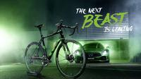 "Rotwild racing bike R.S2 Limited-Edition ""Beast of Green Hell"".(Autoevolution)"