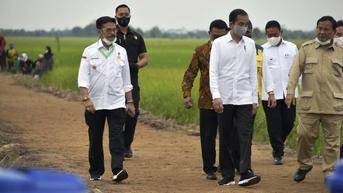 PLN Siap Pasok Listrik ke Kawasan Food Estate Kalimantan Tengah