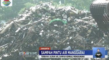 Sampah didominasi sampah rumah tangga dan sampah alam yang terbawa aliran Sungai Ciliwung.