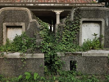 Tanaman liar merambat ke salah satu makam warga keturunan China di TPU Kebon Nanas, Jakarta, Selasa (21/1/2020). Kondisi ratusan kuburan China yang berada di TPU Kebon Nanas sangat memprihatinkan. (merdeka.com/Iqbal Nugroho)