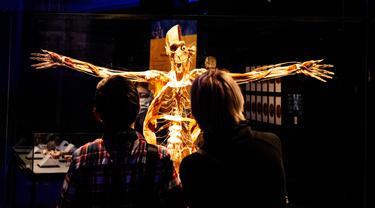 Pengunjung melihat salah satu karya seni yang dipajang dalam pameran anatomi tubuh manusia bertajuk 'Body Worlds' di Moskow, Rusia (24/3/2021). Pameran ini digagas oleh ahli anatomi asal Jerman, Gunther von Hagens. (AFP/Dimitar Dilkoff)
